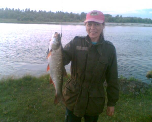 ловить рыбу на десне