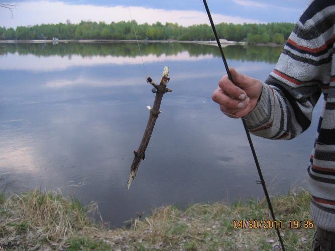 снась для ловли голавля на майского жука