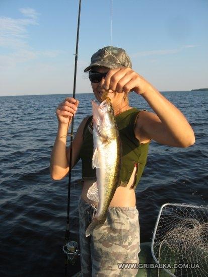 отчеты о рыбалке киевское море