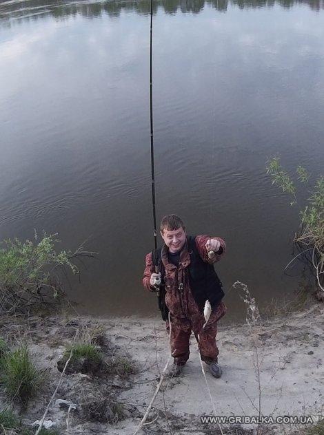 запрет на рыбалку 2017 в черниговской области