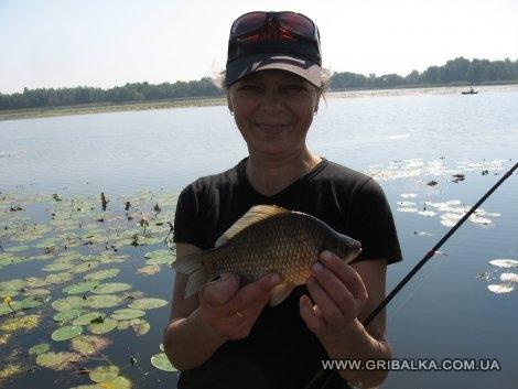 прогноз клева рыбы в красноармейском районе